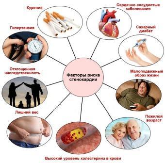 Факторы риска стенокардии